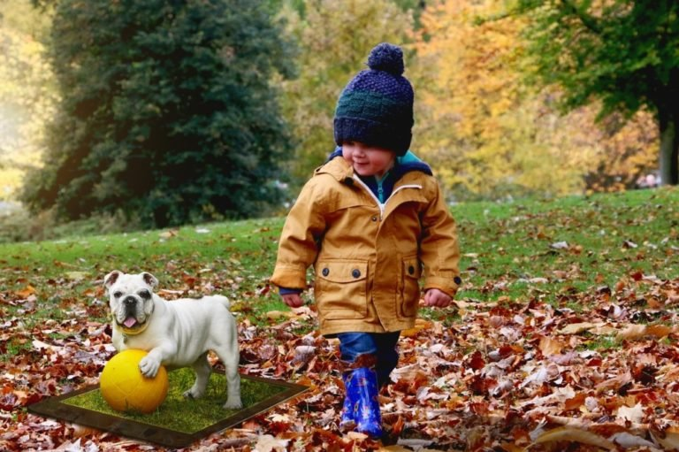 Dogs And Children: Recommended Breeds