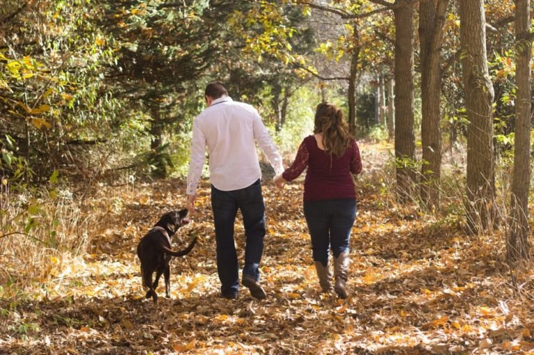 How To Walk A Dog With Or Without A Leash